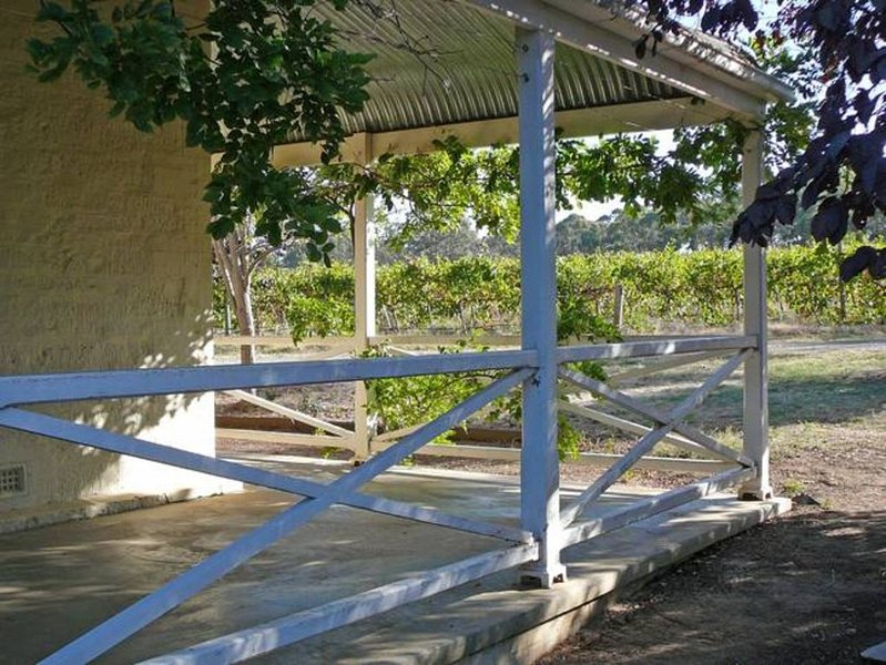 Cool leafy verandas