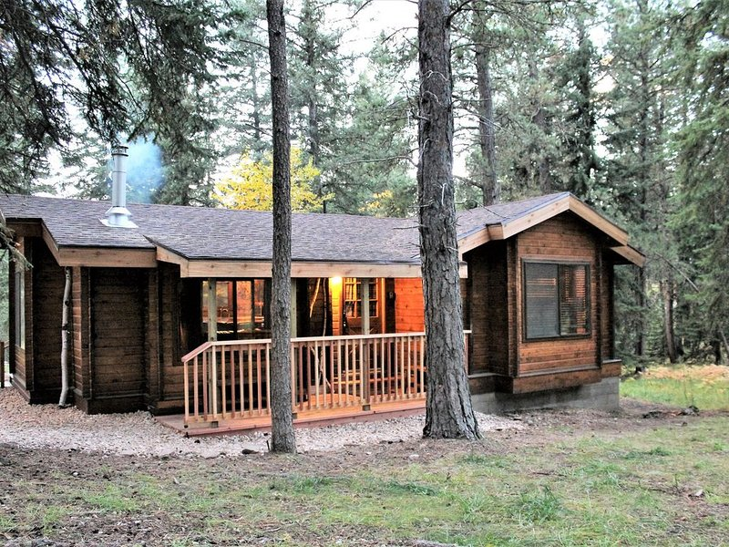 Gold Run-Cozy Cabin by ATV Trails/Deadwood/Skiing, Hot Tub, WiFi, 3 SatTVs, AC, vacation rental in Deadwood