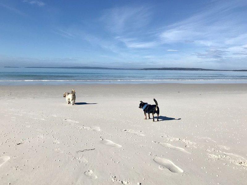 Allara - Pet friendly * Callala Beach, location de vacances à Callala Beach