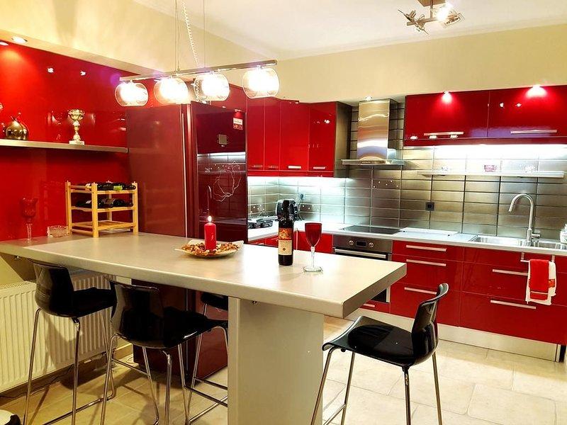 Luxury Apartments near Olympic Stadium., holiday rental in Kyiv (Kiev)