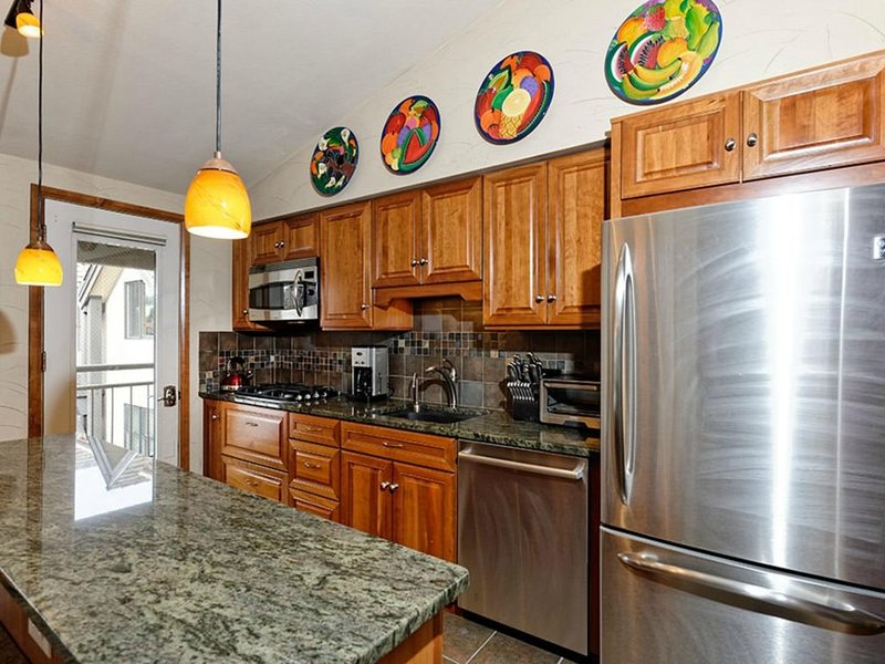 AC-SUNNY PENTHOUSE-ASPEN MT VIEW-PAR 4 TO GONDOLA-25% DISCOUNT 30+DAY STAY, holiday rental in Aspen