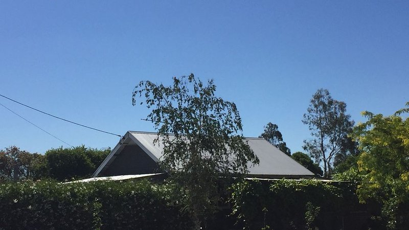 CUTE Cottage on the edge of town.  Great short stay �, casa vacanza a Wagga Wagga