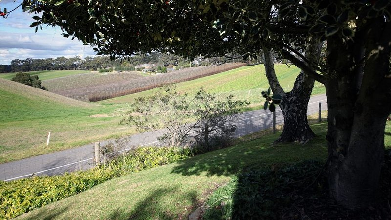 Heysen Hideaway - Adelaide Hills, holiday rental in Crafers