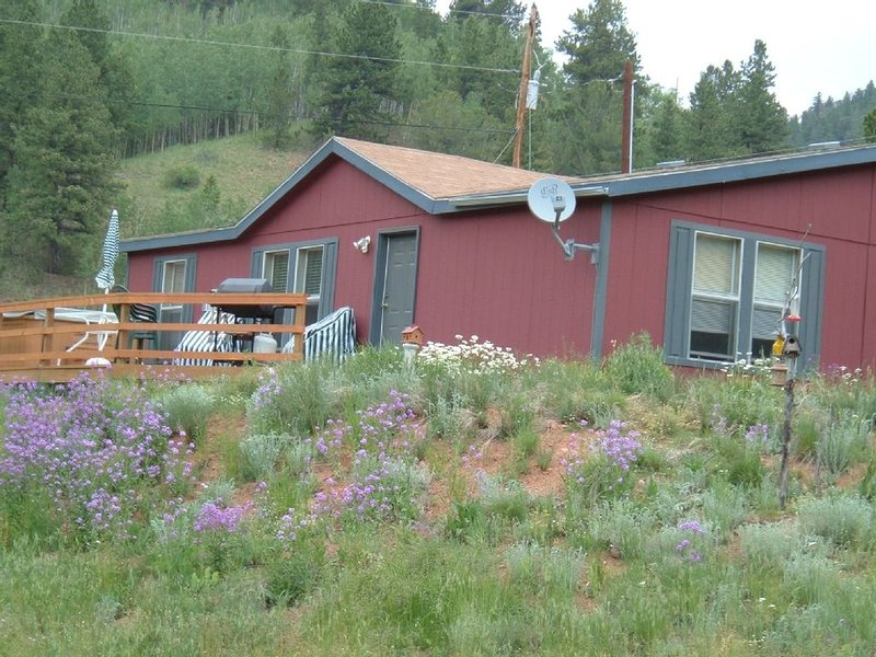 Distinctive Vacation Retreat w/ Hot Tub, Private Valley and Views!!, holiday rental in Cripple Creek