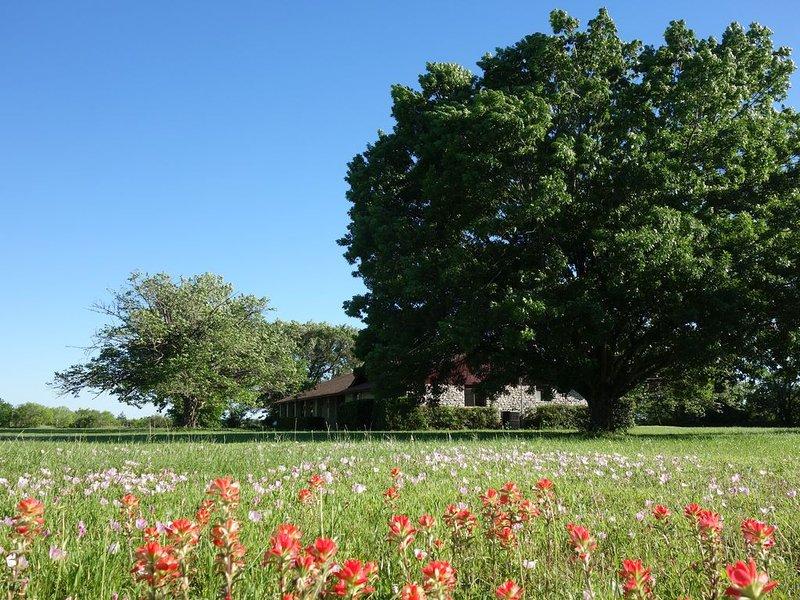 Beautiful, Peaceful, family-friendly Countryside Home near Austin TX,  ACL, COTA, alquiler vacacional en Bastrop