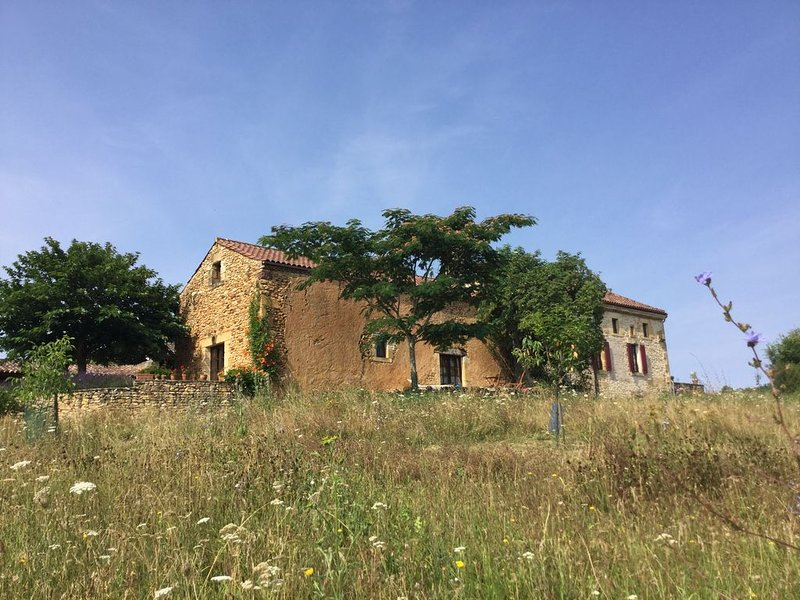 Restored farmhouse with beautiful views, privacy and comfort, holiday rental in Gaugeac