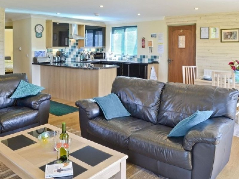 A Beautiful Lodge and three fishing  Lakes in the Devon Countryside - Primrose – semesterbostad i Holsworthy