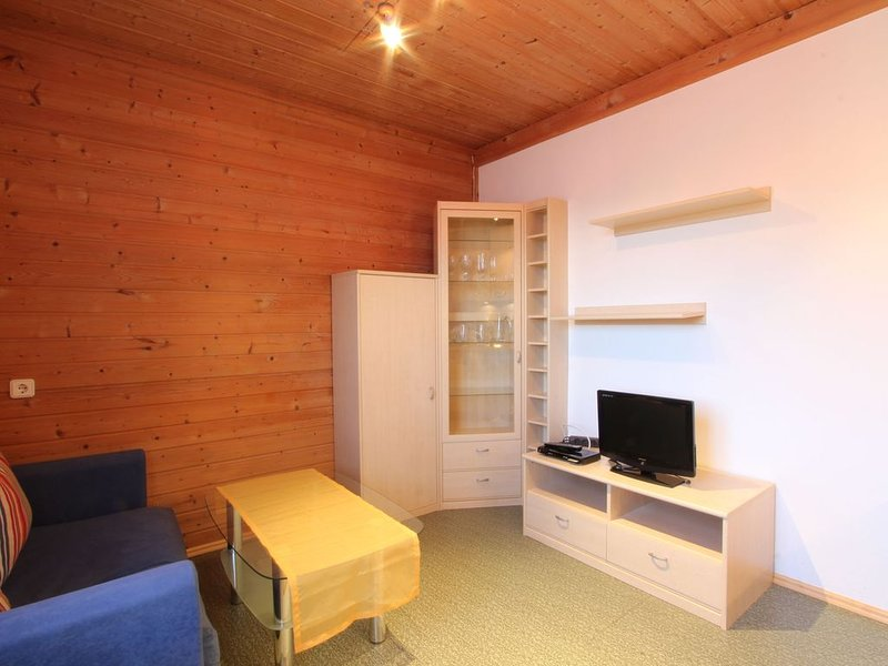 Lovely Apartment in Mittersill near Kitzbühel - Kirchberg, vacation rental in Mittersill