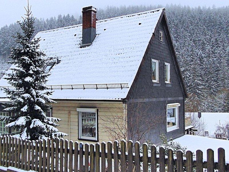 Pleasant Apartment in Wildemann amid Forest, holiday rental in Wildemann
