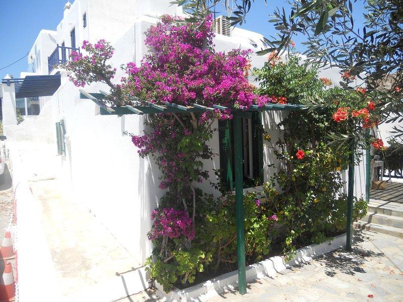 Charming House in Platy Gialos Mykonos, casa vacanza a Platys Gialos