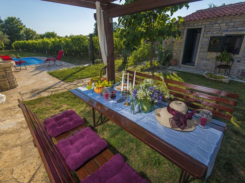 Beautiful holiday home with private pool, nice guesthouse, garden, terrace, BBQ, vacation rental in Benkovac