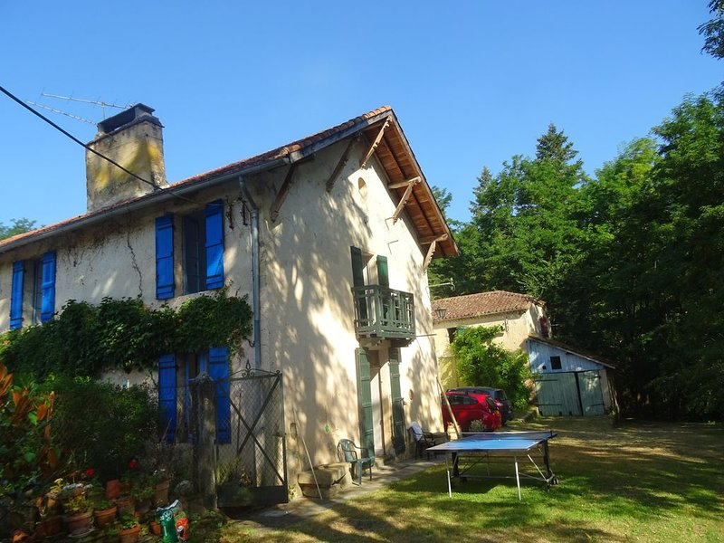 Large Characterful Farmhouse set in the beautiful tranquil French countryside, vacation rental in Barbotan-les-Thermes