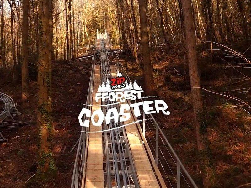 Zip World Fforest Coaster (all weather)