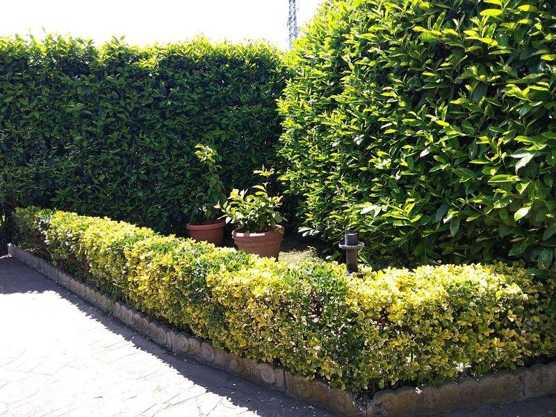 Appartamento   Carla, holiday rental in Capezzano Pianore