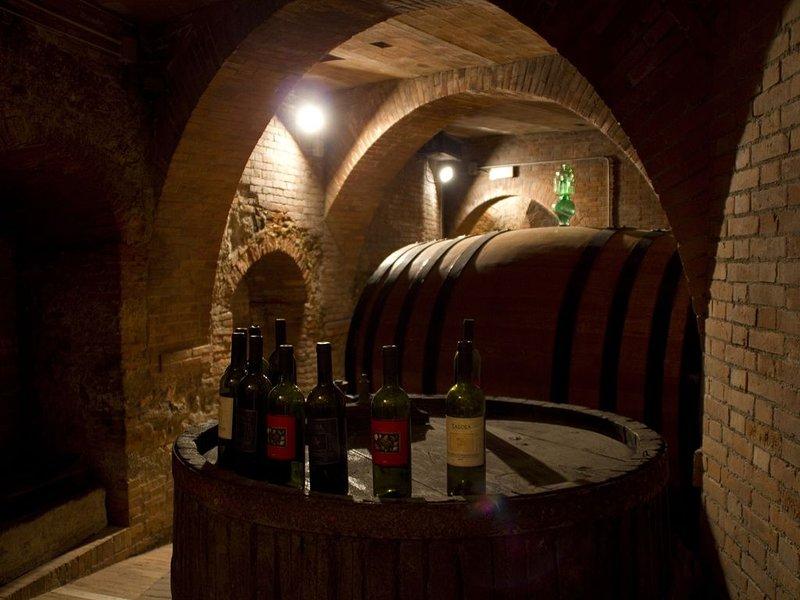 Det finns många vingårdar att besöka i omgivningen