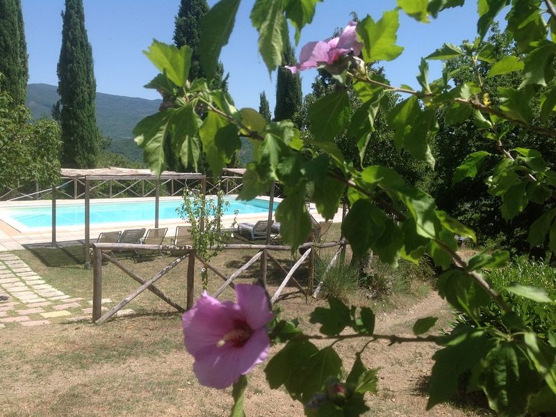 Family-friendly Cottage in authentic stone style Pool Nature Wine Relax Wifi, vacation rental in Talla