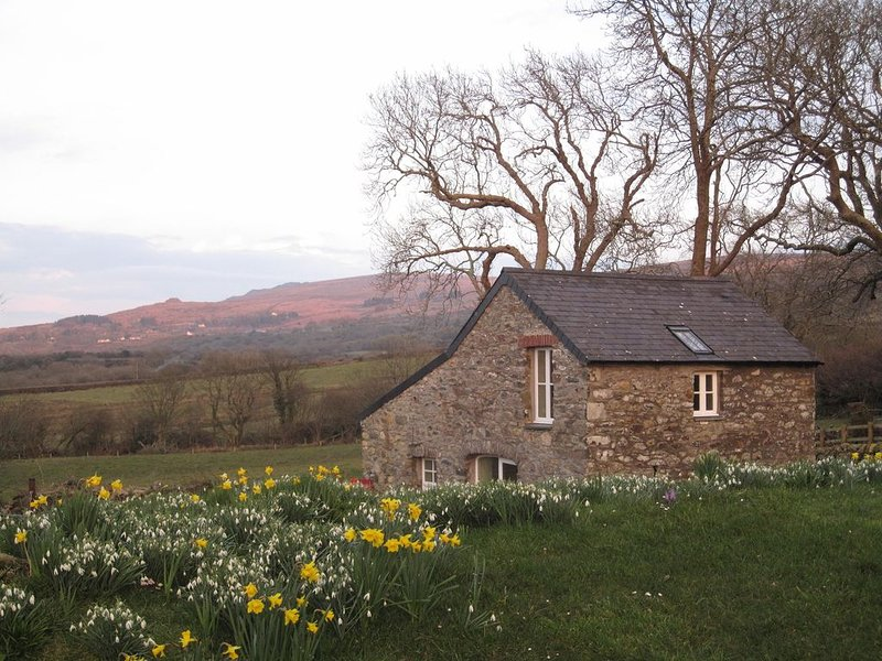 Stunning sea and mountain views near Cwm yr Eglws.  Perfect  for a winter break, alquiler vacacional en Newport -Trefdraeth