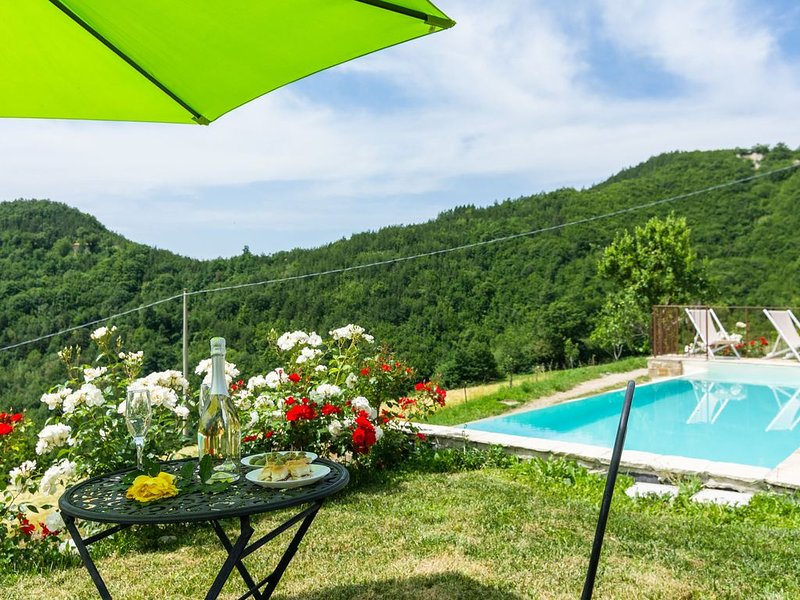 Farmhouse with pool in the hills, pristine nature, wine tasting, vacation rental in Belforte all'Isauro