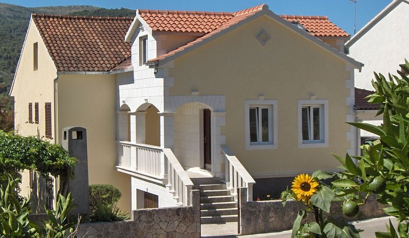 Antique apartment in Stari Grad, holiday rental in Rudina
