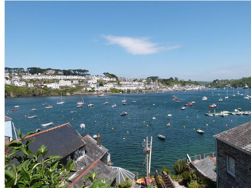 View across the Estuary to Fowey.
