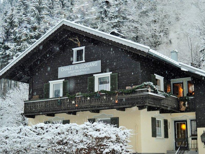 Chalet in Leogang , Apartment Steinberge (C) 3 x Bedrooms Ground floor, alquiler de vacaciones en Sankt Martin bei Lofer