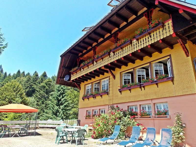 Large group house in Todtmoos in the southern Black Forest with a gorgeous view, alquiler vacacional en Todtmoos