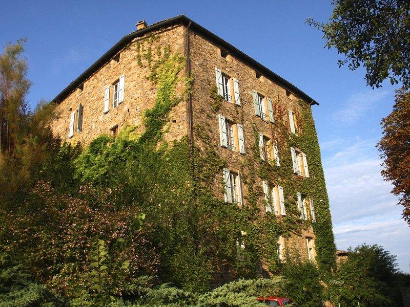 Une fabrique du XIX tout entière à soi entre amis ou pour toute une famille, vakantiewoning in Vindrac-Alayrac