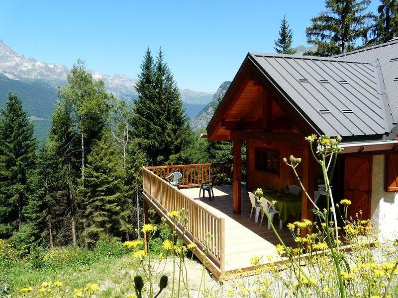 Chalet au pied des pistes du Domaine Alpe d'huez  8 personnes - WIFI, location de vacances à Allemond