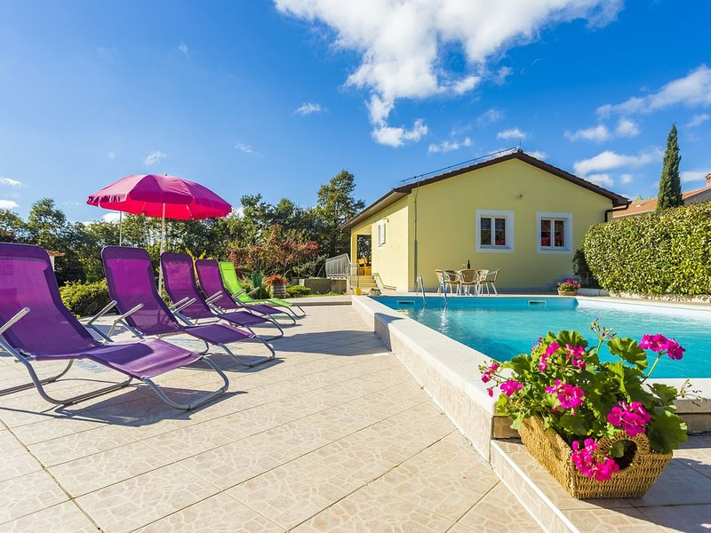 New holiday home for 6, 90 m² with private pool 40m², holiday rental in Zabrezani