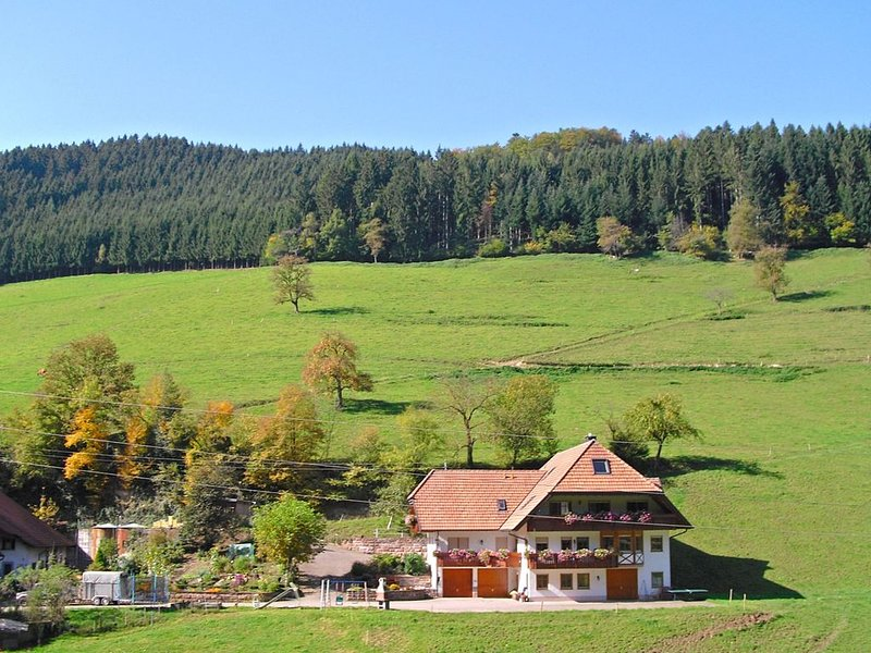 Comfy Apartment in Salmensbach near River, holiday rental in Zell am Harmersbach