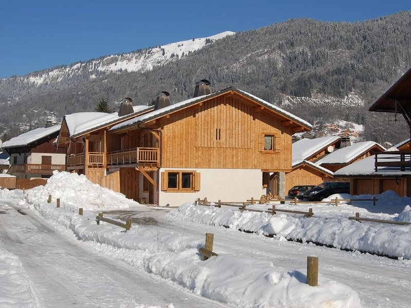 Chalet pour 7 personnes, holiday rental in Grand Massif