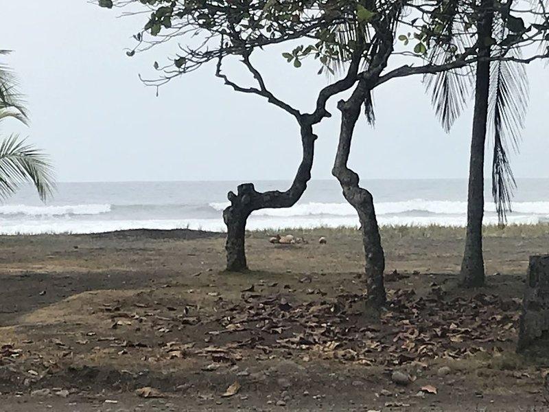 Beach Front Playa Bandera House.   Casa justo frente a la playa. Venga y disfrut, aluguéis de temporada em Bejuco