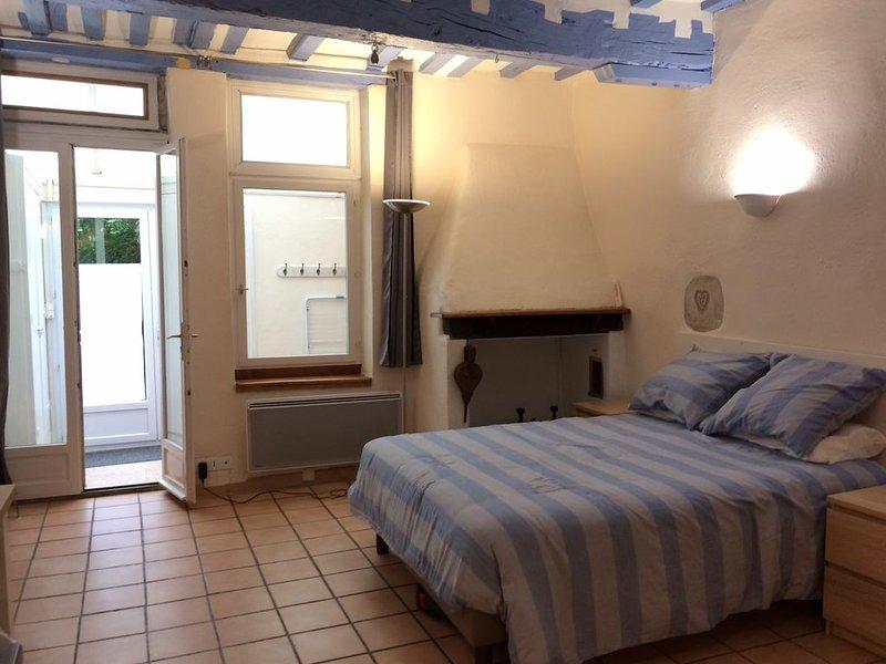 Pau studio 32 m2, au calme, coeur historique, rez-de-chaussée, côté jardin, holiday rental in Pau
