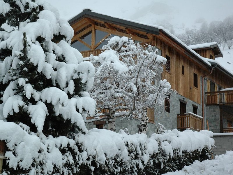 CHALET LE TUIT:TRES BEL APPARTEMENT-CHARME-CONFORT-SPA -LES MENUIRES, holiday rental in Le Bettaix