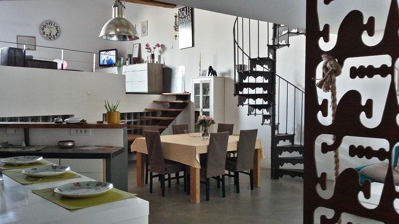 Sud de la france, loft 180 m2 vue panoramique sur les vignes., location de vacances à Le Pouget
