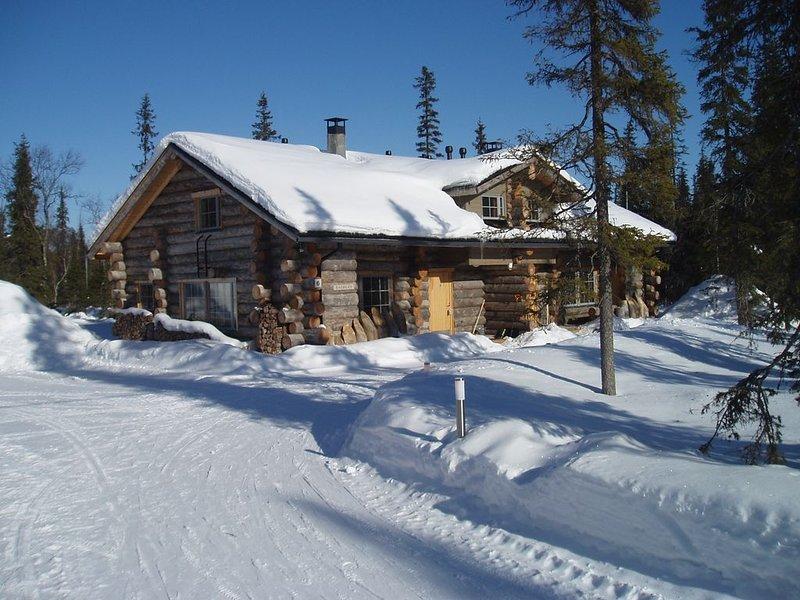 WINTER WONDERLAND WITH NORTHERN LIGHTS Log Cabin Gregory A, alquiler vacacional en Raudanjoki