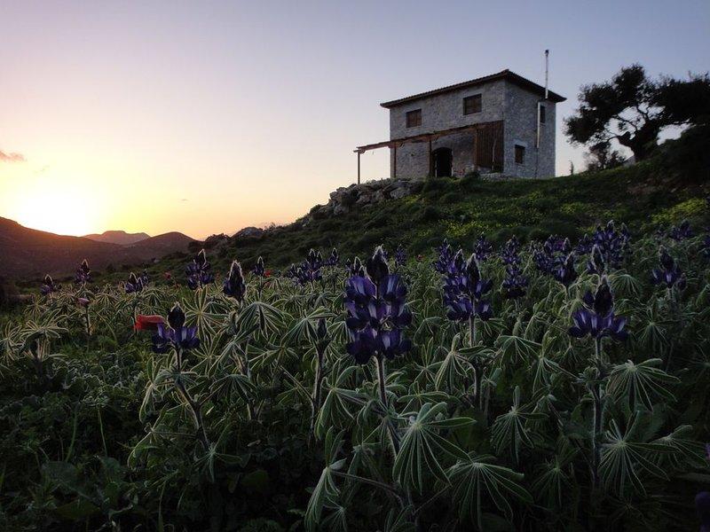 Kerames South Crete - Akonize stone house, holiday rental in Kerames