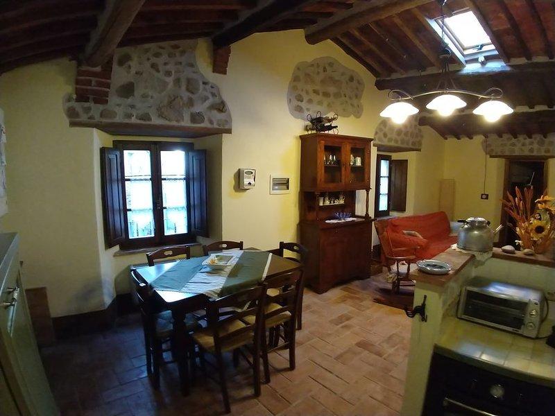 Casina nel borgo, relax, terme, natura, cultura, enogatronomia, holiday rental in Civitella Paganico