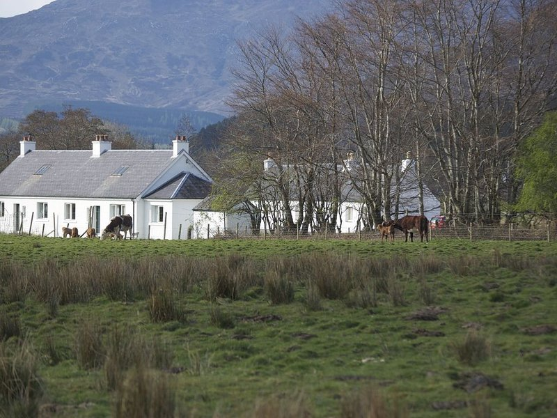 Vue de Strathan Cottage depuis le champ