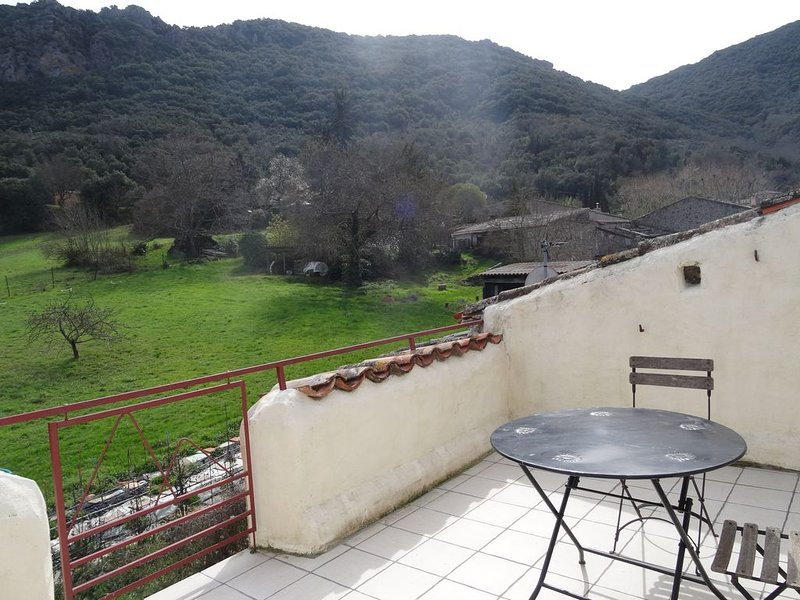 Delightful Gite in the hills, ideal for bathing, chateaux and wine, holiday rental in Villetritouls