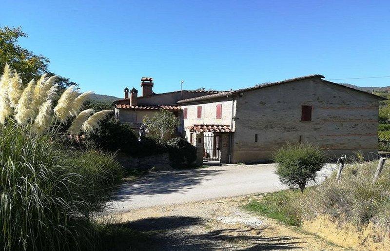 'Casa Vacanze Terrossoli' Id. codice 051006LTN0004, holiday rental in Bibbiano