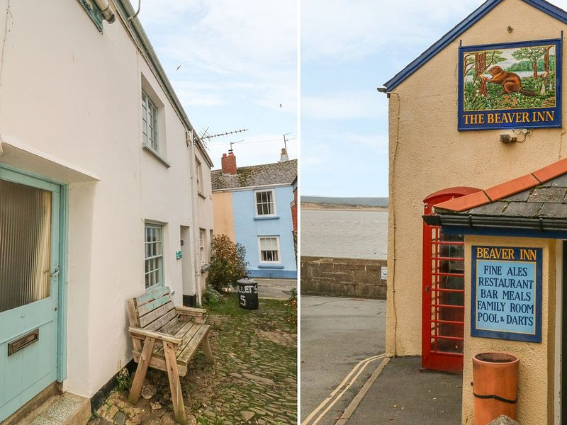Willets Cottage, APPLEDORE, holiday rental in Appledore