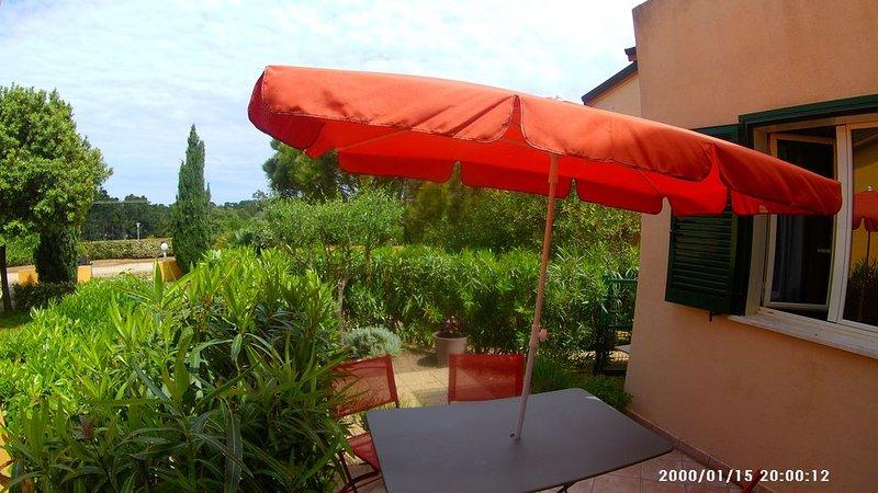 agréable appart T3 ,près de la mer, jolie terrasse avec jardin et piscine, location de vacances à Palasca
