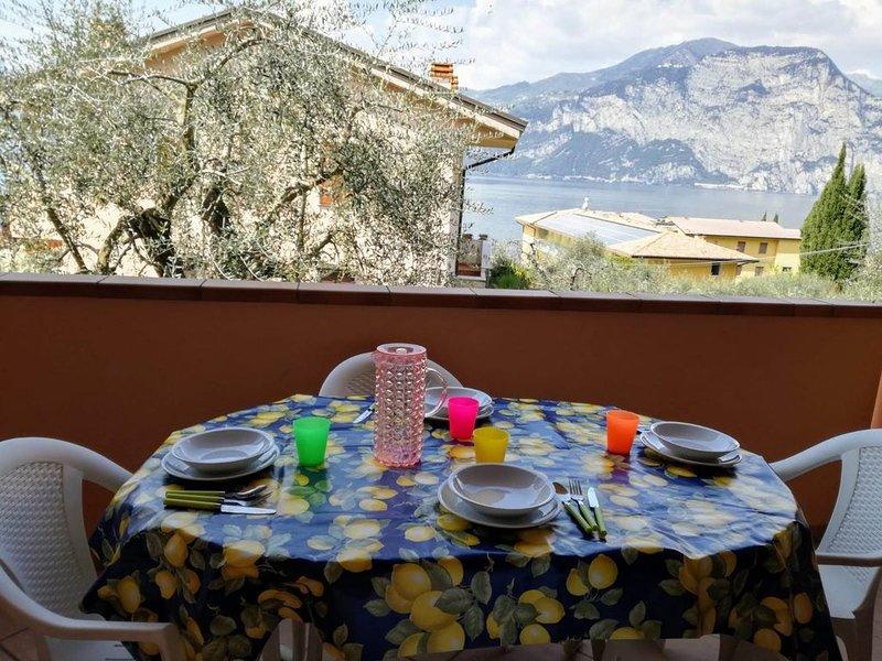 Appartamento immerso negli ulivi con terrazzo vista Lago di Garda – semesterbostad i Brenzone sul Garda