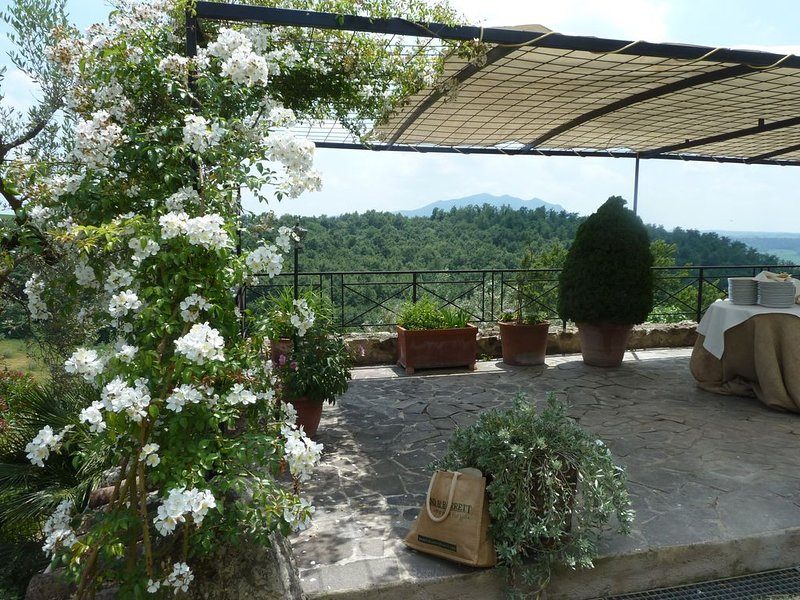 Villa Poggio Sommavilla, holiday rental in Ponzano Romano