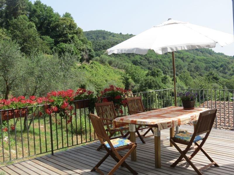 Vrijstaande 'rustico' tussen de olijven, terras met prachtig uitzicht op Lucca, holiday rental in Orbicciano