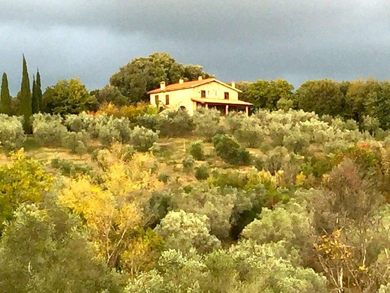 Agriturismo Campo al Crognolo., vacation rental in Ribolla