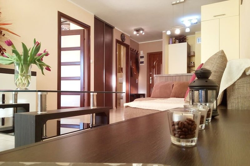 Dream Apartment in the center of Warsaw, alquiler de vacaciones en Varsovia