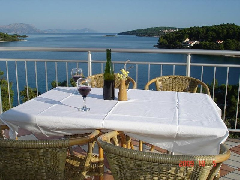 Apartment A2 - Apartments Danijela, sea view with private swimming pool, holiday rental in Zrnovo