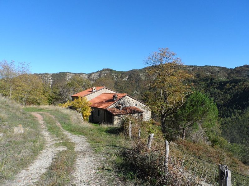 A place to unwind, surrounded by natural beauty, and river swimming nearby, alquiler vacacional en Dovadola